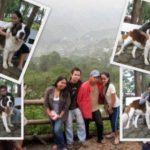 Mines View Park 300x225 150x150 Baguio Tourist Spot