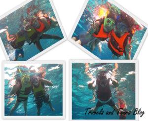 Snorkeling-Balicasag,Snorkeling-Balicasag bohol