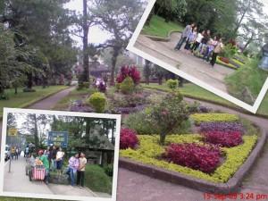 Sunshine Park