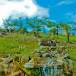 Dahilayan garden, dahilayan adventure park bukidnon, bukidnon dahilayan,dahilayan zip line, dahilayan zorb,dahilayan atv, dahilayan drop zone, dahilayan adventures