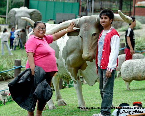 Dahilayan Adventure Park Family Bonding, Dahilayan Adventure Park, Dahilayan Adventure Park bukidnon, Dahilayan Garden, Travel around Philippines, travel guide