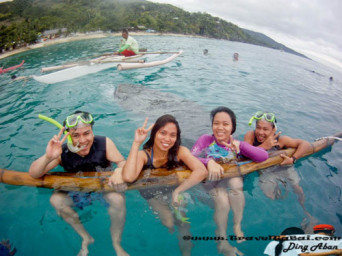 Whale Shark Close Encounter in Oslob, Whale Shark, Butanding. cebu tourist destinations, tourist destinations, swim with the whale shark, popular tourist attraction in the Philippines, tourist attraction in the Philippines, Whale Shark Oslob